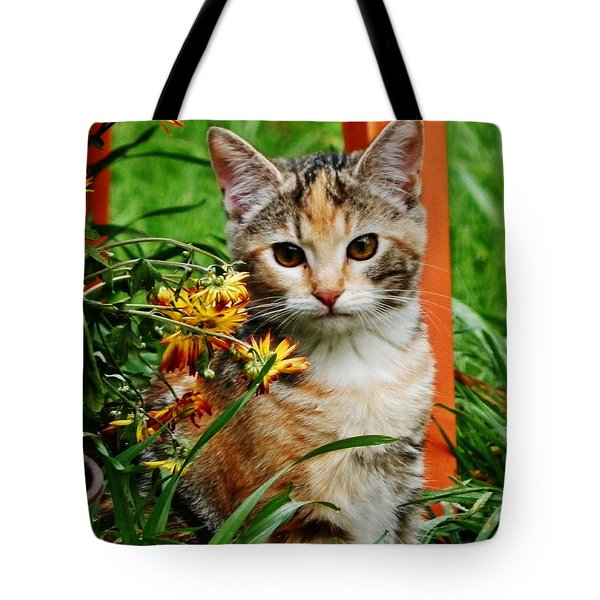 Tote Bag featuring the photograph Lily Garden Cat by VLee Watson