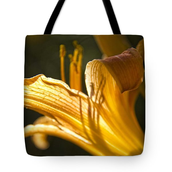 Lily In The Yard Tote Bag by Daniel Sheldon