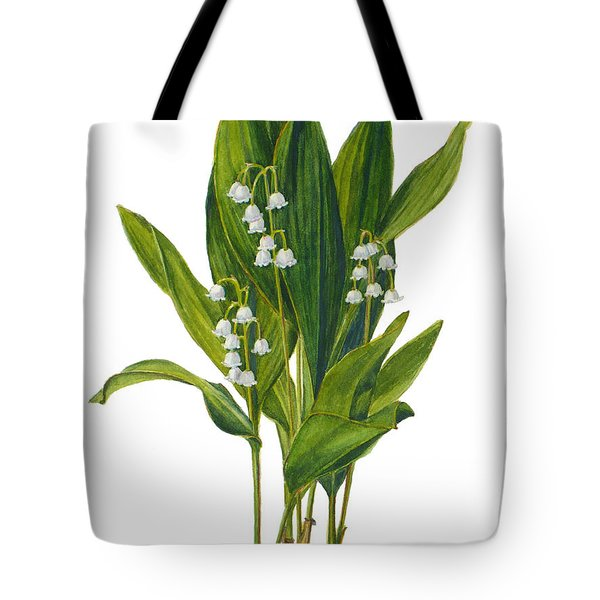 convallaria majalis lily of the valley convallaria majalis painting by janet zeh