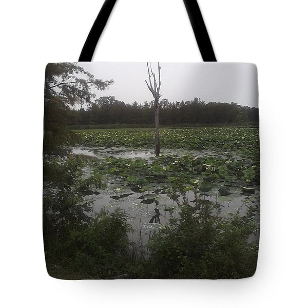 Tote Bag featuring the photograph Lily Pads by Fortunate Findings Shirley Dickerson