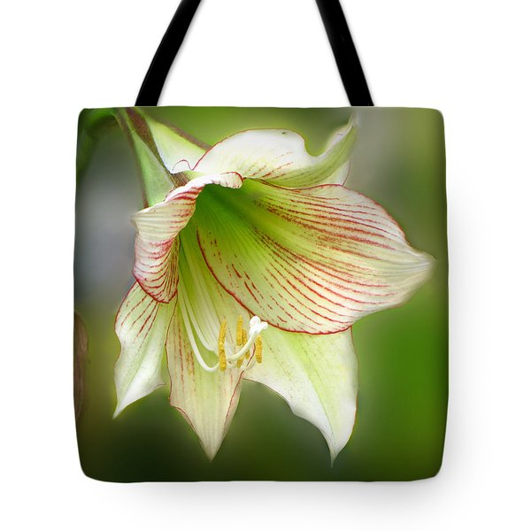 Lily Tote Bag by Phil Penne