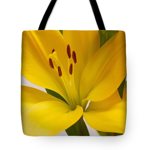 Lily Tote Bag by Scott Carruthers