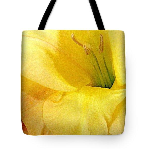 Lily Velour   Tote Bag by Danielle  Parent