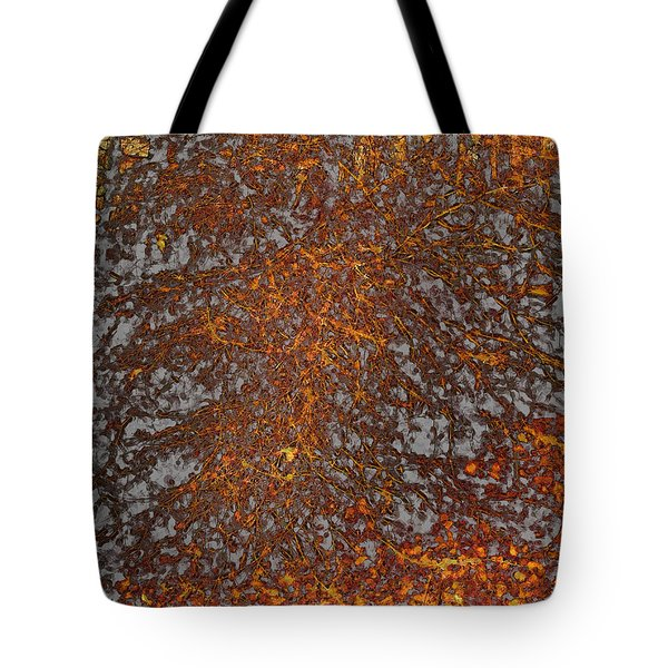 Limbinosity Tote Bag by Jo-Anne Gazo-McKim