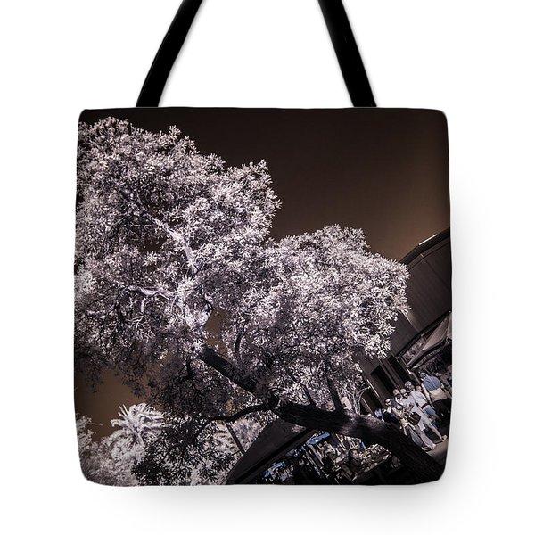Lincoln Road Tree Tote Bag