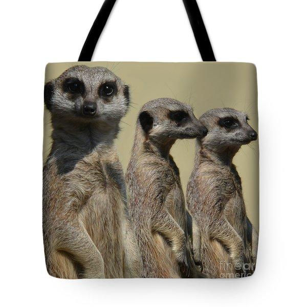 Line Dancing Meerkats Tote Bag