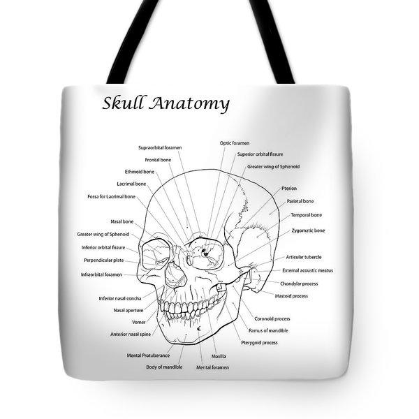 Line Illustration Of A Human Skull Tote Bag