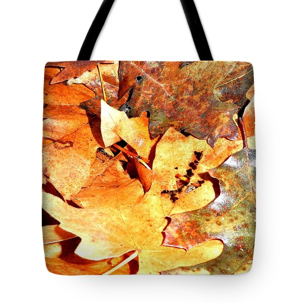 Lines Of Fall Tote Bag
