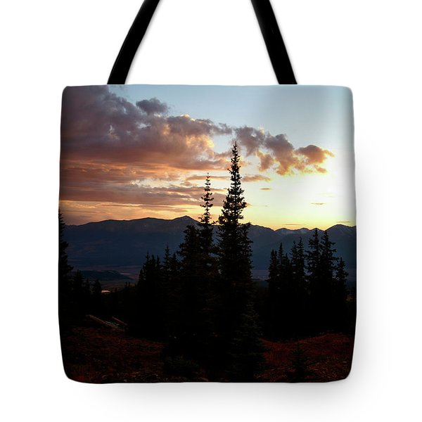 Linger Tote Bag by Jeremy Rhoades