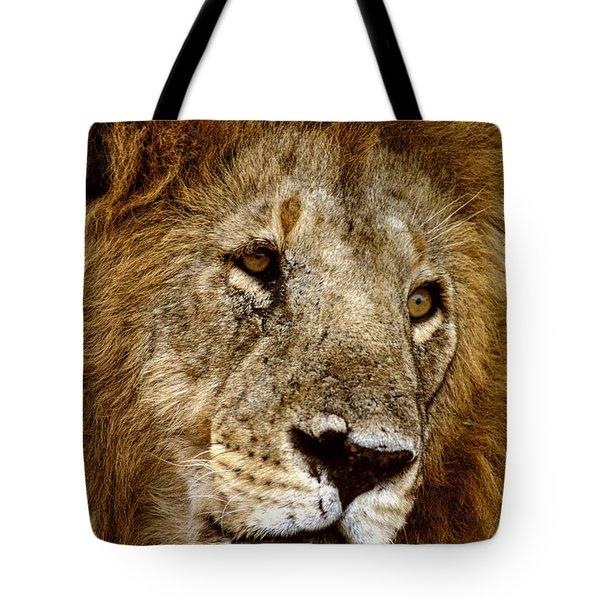 Lion 01 Tote Bag by Wally Hampton