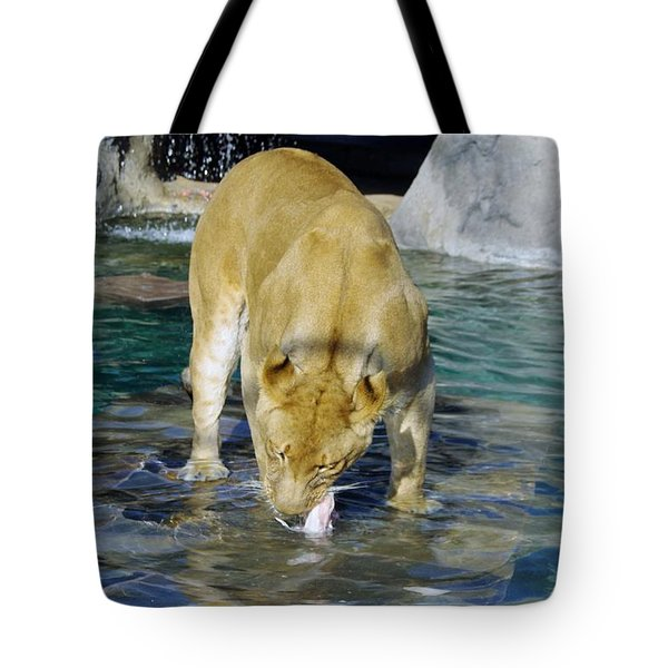 Lion 3 Tote Bag