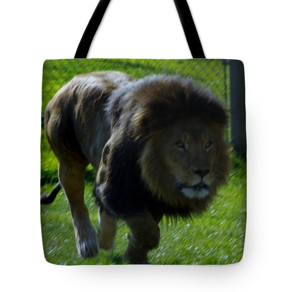 Lion 4 Tote Bag