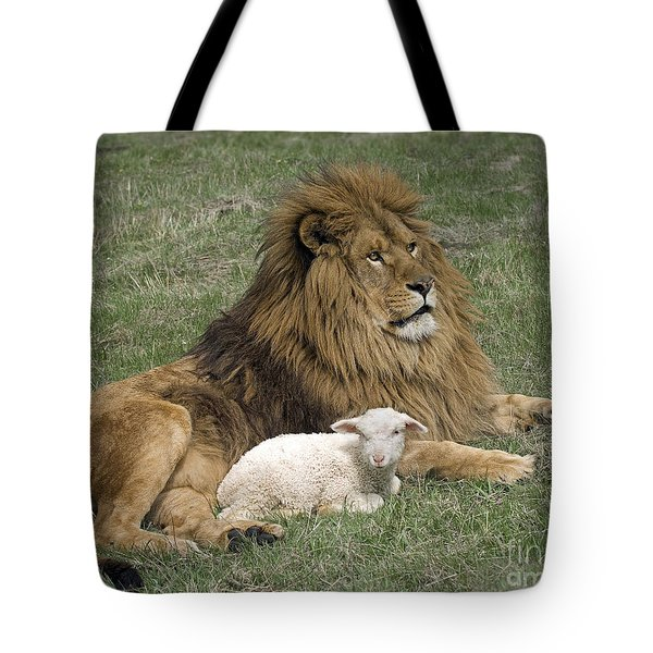 Lion And Lamb Tote Bag by Wildlife Fine Art