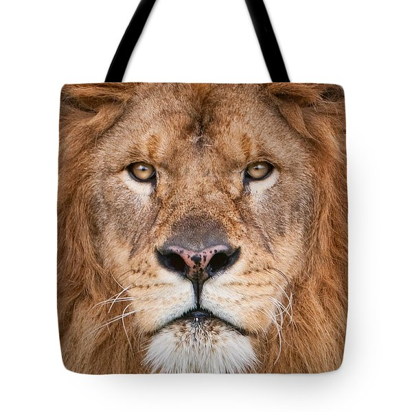 Tote Bag featuring the photograph Lion Close Up by Jerry Fornarotto