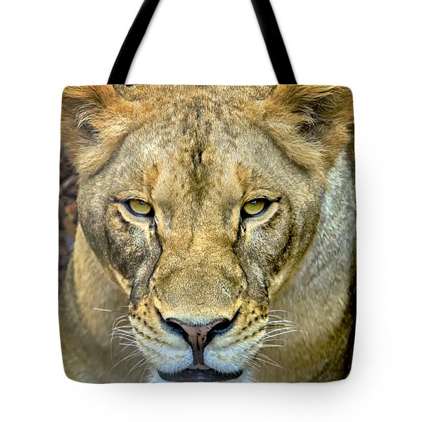 Lion Closeup Tote Bag by David Millenheft