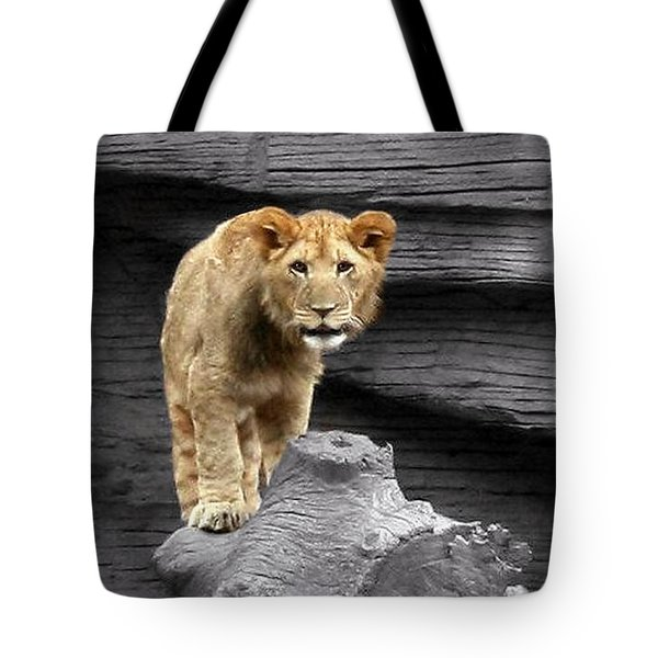 Lion Cub Tote Bag by Cathy Harper