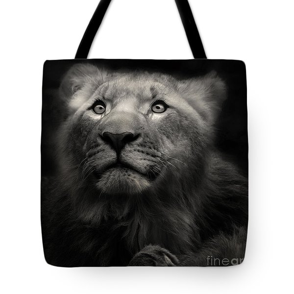 Lion In The Dark Tote Bag by Christine Sponchia