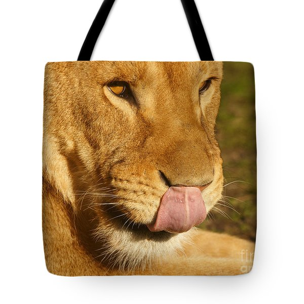 Lion Licking Her Nose Tote Bag