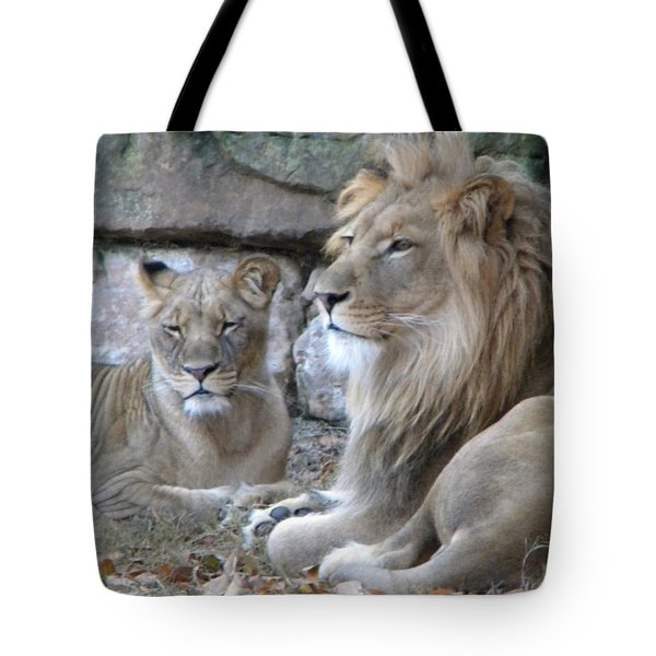 Tote Bag featuring the photograph Lion Love by Amanda Eberly-Kudamik