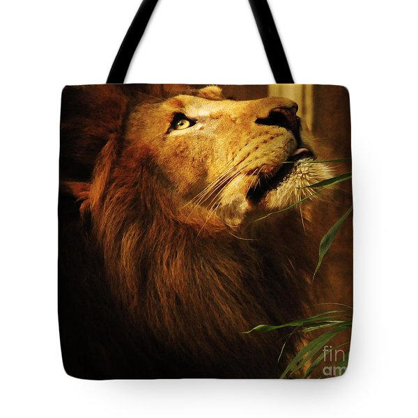 Tote Bag featuring the photograph The Lion Of Judah by Olivia Hardwicke