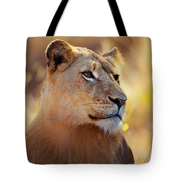Lioness Portrait Lying In Grass Tote Bag