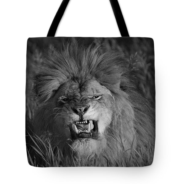 Lions Courage Tote Bag by Wildlife Fine Art