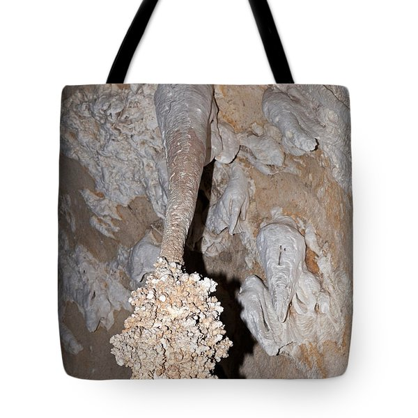 Lions Tail Carlsbad Caverns National Park Tote Bag