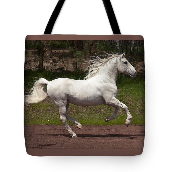 Tote Bag featuring the photograph Lipizzan At Liberty D5809 by Wes and Dotty Weber