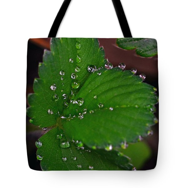 Liquid Pearls On Strawberry Leaves Tote Bag by Lisa Phillips