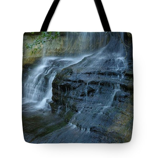 Listen Tote Bag by Randy Pollard