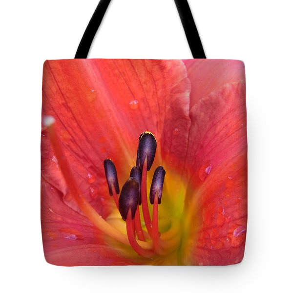 Tote Bag featuring the photograph Listening by Agnieszka Ledwon