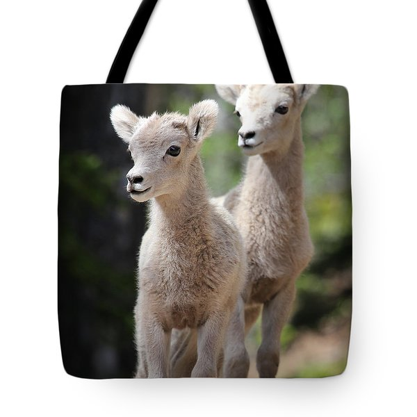Little Bighorns Tote Bag