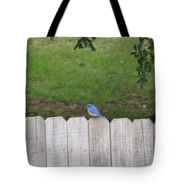 Tote Bag featuring the photograph Little Bird by Beth Vincent