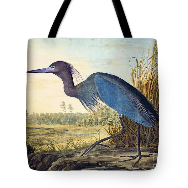 Little Blue Heron Tote Bag by Celestial Images