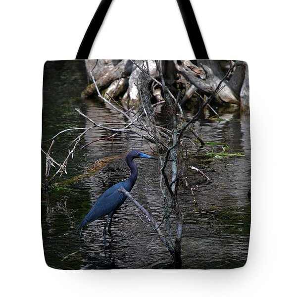 Little Blue Heron Tote Bag by Skip Willits