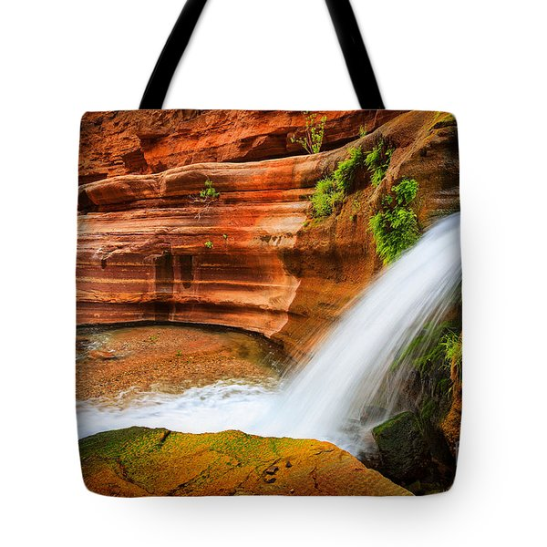 Little Deer Creek Fall Tote Bag by Inge Johnsson