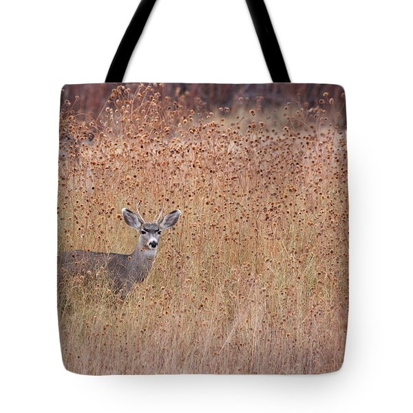 Little Deer Tote Bag by Ruth Jolly