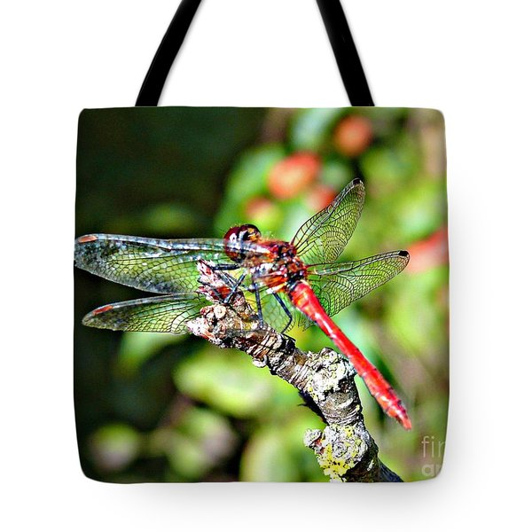 Little Dragonfly Tote Bag by Morag Bates