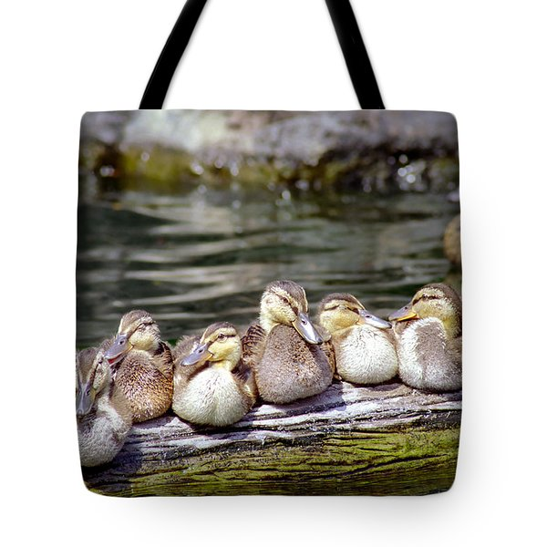 Little Ducklings On A Log Tote Bag