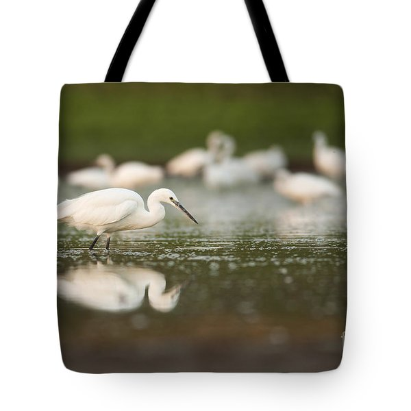 Little Egret Egretta Garzetta Tote Bag by Alon Meir
