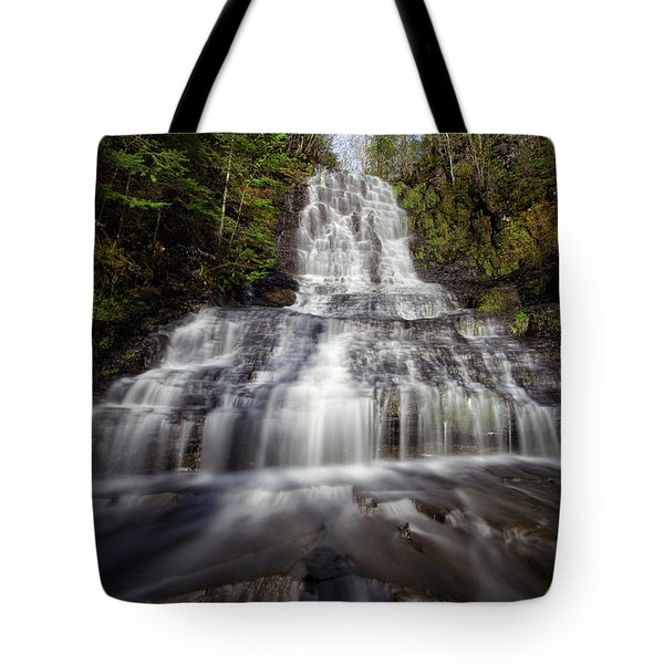 Little Falls Tote Bag by Jakub Sisak