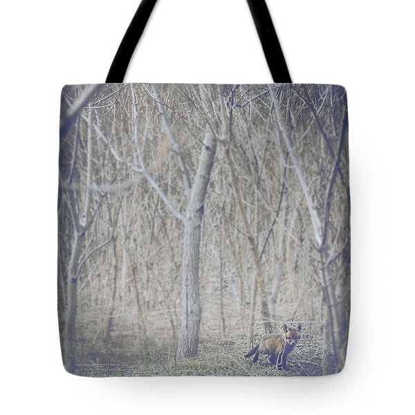 Little Fox In The Woods 2 Tote Bag