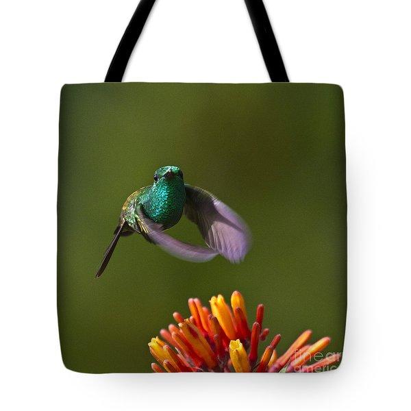 Little Hedgehopper Tote Bag