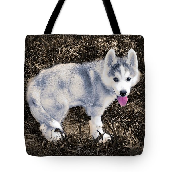 Little Huskie Pup Tote Bag by Bill Cannon