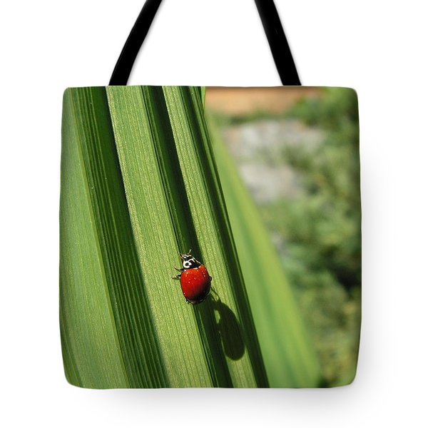 Tote Bag featuring the photograph Ladybird by Cheryl Hoyle