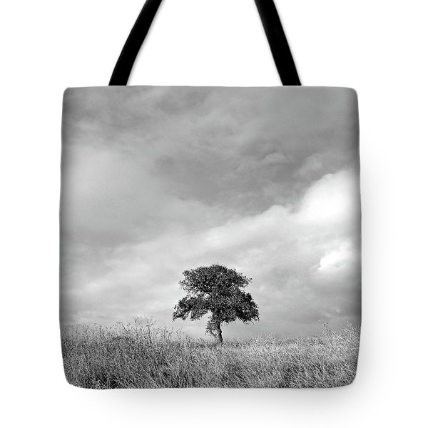 Little Lone Oak Tree Tote Bag