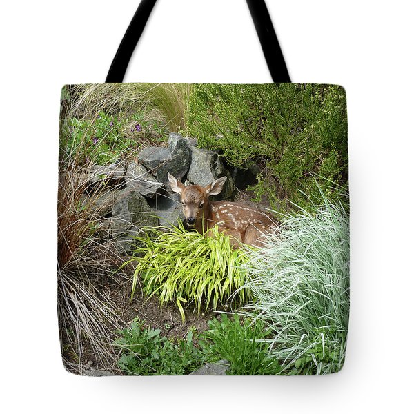 Little Lord Fawnleroy Tote Bag by Lauren Leigh Hunter Fine Art Photography