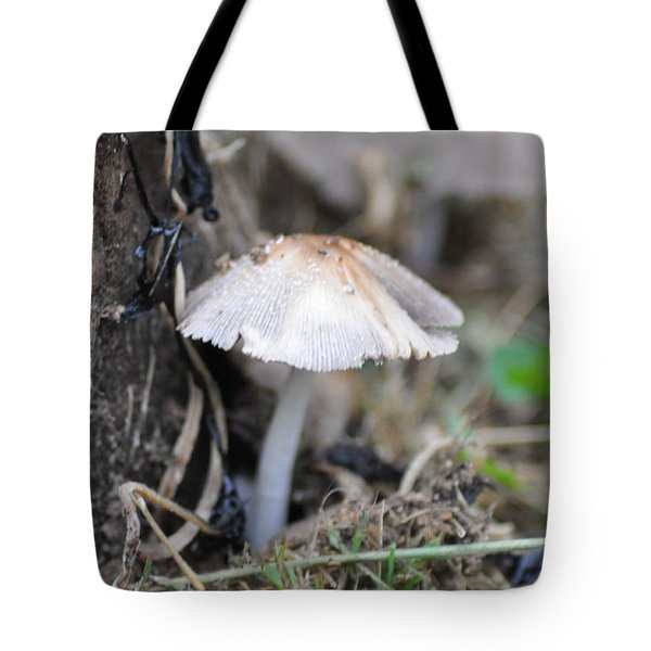 Little Mushroom Tote Bag by Bill Cannon