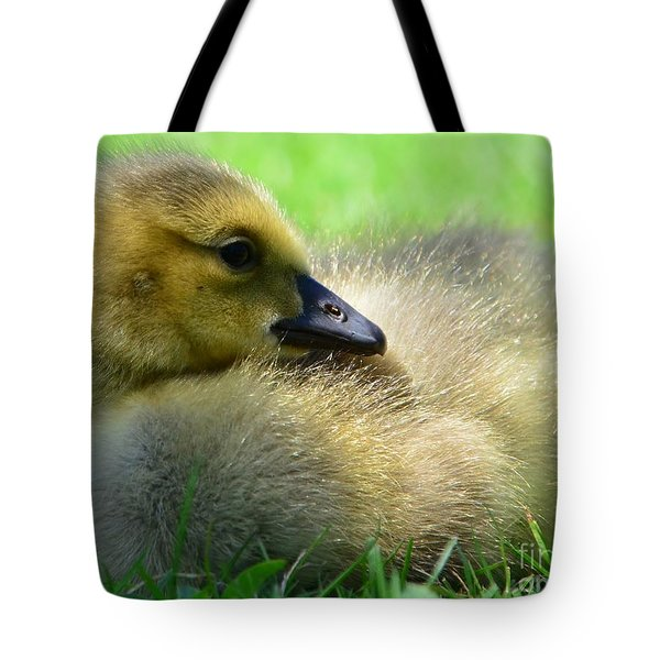 Little One Tote Bag by Kathleen Struckle