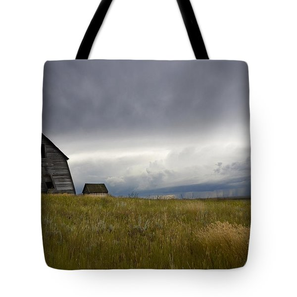 Little Remains Tote Bag by Bob Christopher
